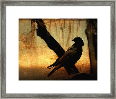 Crossed With A Gothic Sunset Framed Print by Gothicrow Images