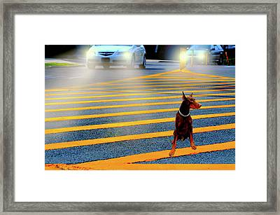 Crossing Guard Framed Print by Diana Angstadt