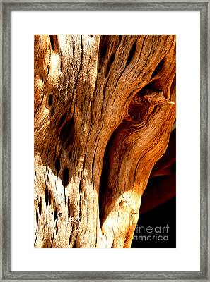 Crossing Texture  Framed Print by Jamie Lynn