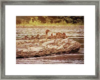 Crossing The River Framed Print by JAMART Photography