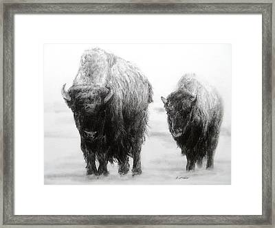 Crossing Yellowstone Framed Print