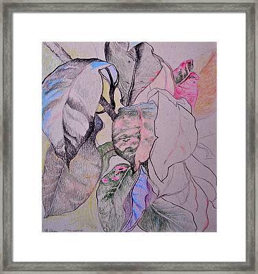 Croton Framed Print by Bonnie See