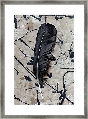 Crow Feather Midnight Black Framed Print