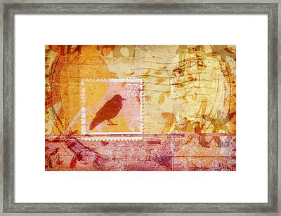 Crow In Orange And Pink Framed Print by Carol Leigh