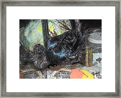 Framed Print featuring the mixed media Crow Mid Flip by YoMamaBird Rhonda