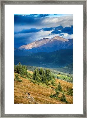 Crow On A Mountainside Framed Print