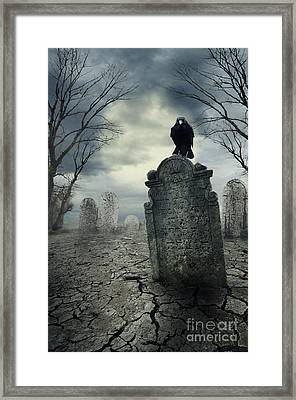 Crow On The Tombstone Framed Print