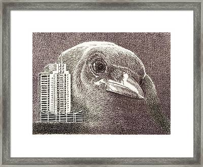 Crow Over Casino Windsor Framed Print
