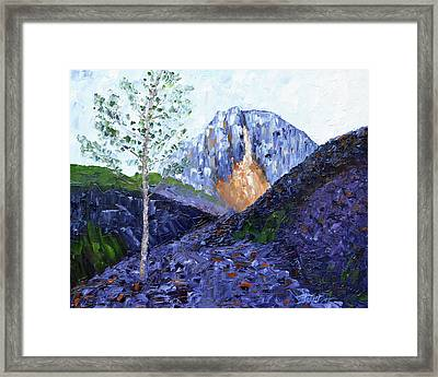 Crow Pass Trail Framed Print