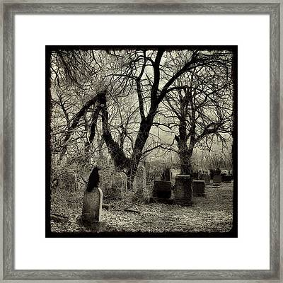 Crow Waits On Tombstone Framed Print