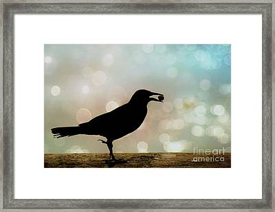 Framed Print featuring the photograph Crow With Pistachio by Benanne Stiens