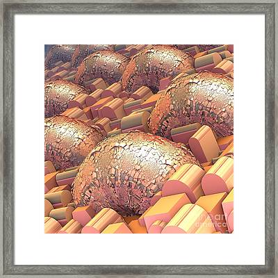 Crowded Framed Print by Michelle H