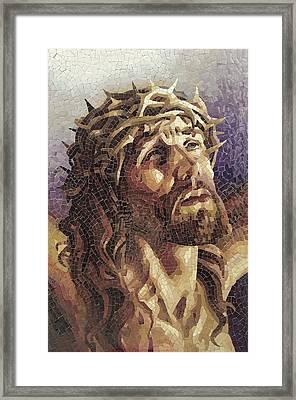 Crown Of Thorns 3 - Ceramic Mosaic Wall Art Framed Print