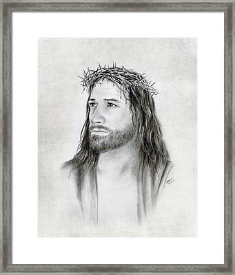 Crown Of Thorns Framed Print by Brent Borup