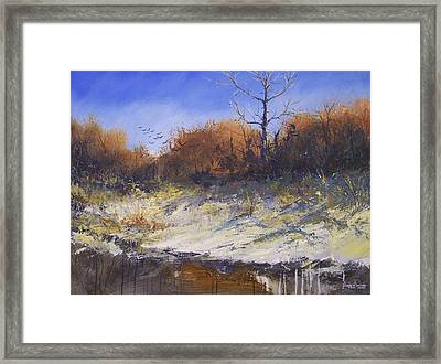Crows Along The Cottonwood Framed Print by Douglas Trowbridge