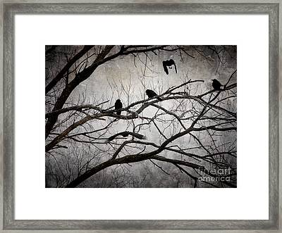 Crows At Midnight Framed Print