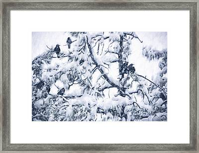 Crows In Snow Framed Print