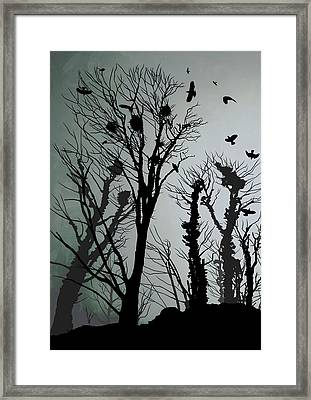 Crows Roost 1 Framed Print by Philip Openshaw