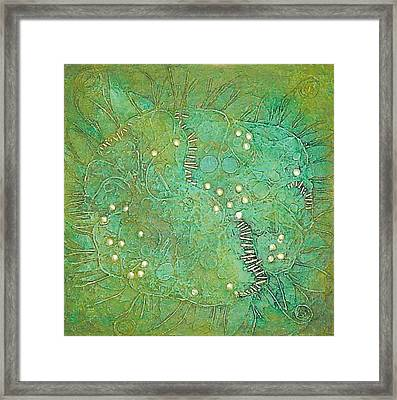 Cruciferous Flower Framed Print by Bernard Goodman