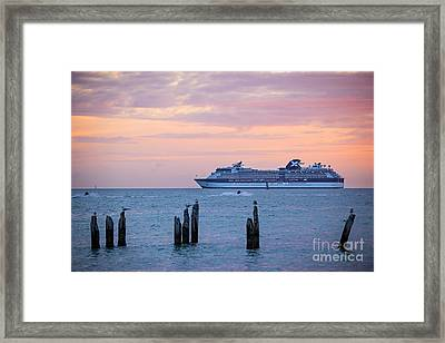 Cruise Ship At Key West Framed Print by Elena Elisseeva