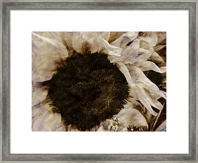 Crumble Framed Print