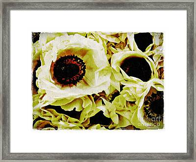 Crumpled White Poppies Framed Print by Sarah Loft