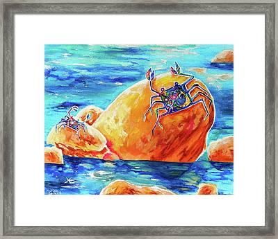 Crustacean Duo  Framed Print by Marika Segal