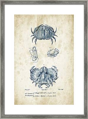 Crustaceans - 1825 - 08 Framed Print