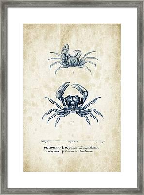 Crustaceans - 1825 - 10 Framed Print