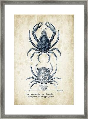 Crustaceans - 1825 - 20 Framed Print