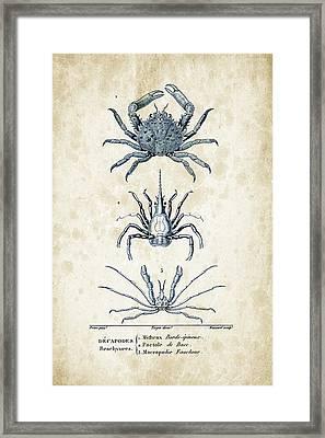 Crustaceans - 1825 - 21 Framed Print