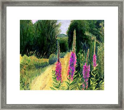 Crybaby Bridge On Egypt Road Framed Print by Diana Ludwig