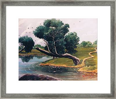 Crying Tree Sold Framed Print