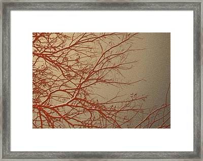 Cryptic Framed Print by Ankeeta Bansal