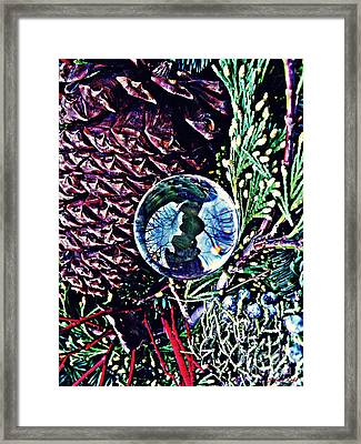 Crystal Ball Project 67 Framed Print