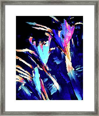 Crystal C Abstract Framed Print by ABeautifulSky Photography