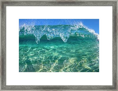 Crystal Clam Framed Print by Sean Davey