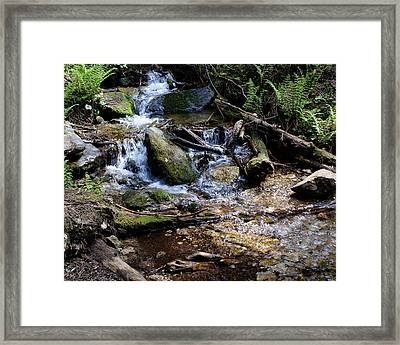 Framed Print featuring the photograph Crystal Clear Creek by Ben Upham III