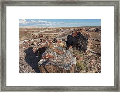 Crystal Forest Stump Framed Print