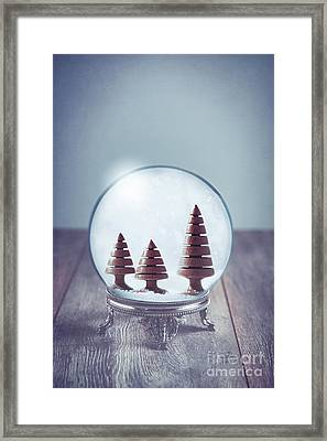 Crystal Globe With Wooden Trees Framed Print