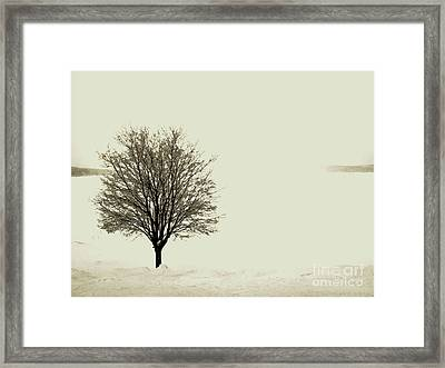 Crystal Lake In Winter Framed Print