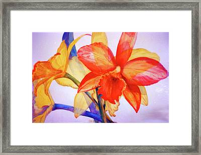 Crystal Orchids Framed Print by Estela Robles