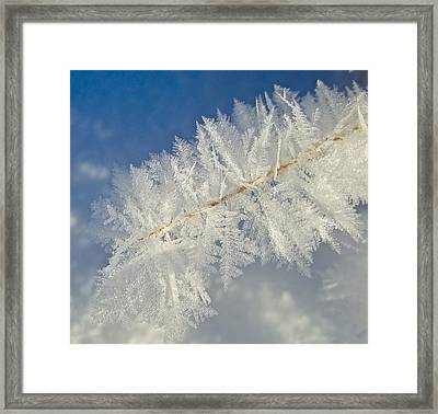 Crystal Perfection Framed Print