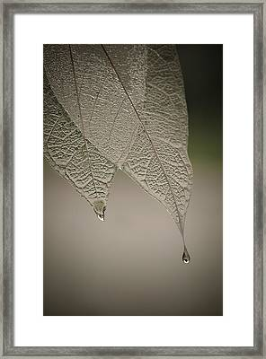Crystal Rain Framed Print