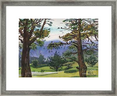 Crystal Springs Fairway Framed Print by Donald Maier
