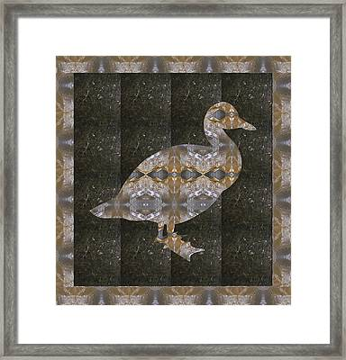 Crystal Stone Duck N Border Bird Framed Print by Navin Joshi