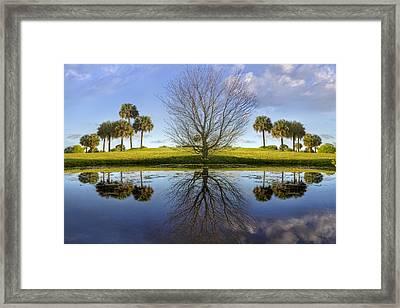Crystal Waters Framed Print by Debra and Dave Vanderlaan