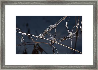 Framed Print featuring the photograph Crystals by Annette Berglund