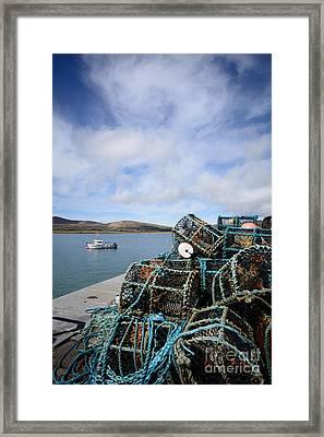 Cuan Framed Print by Nichola Denny