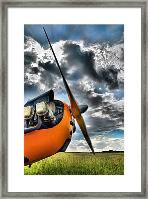 Cub Prop Framed Print by Steven Richardson